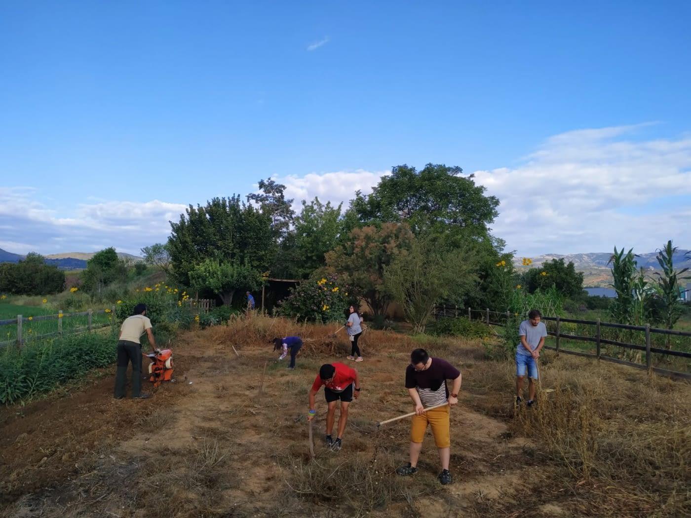El projecte d'agricultura social Llavors d'Oportunitats d'Alba Jussà posa a la venda llavors tradicionals recuperades del Pallars Jussà.