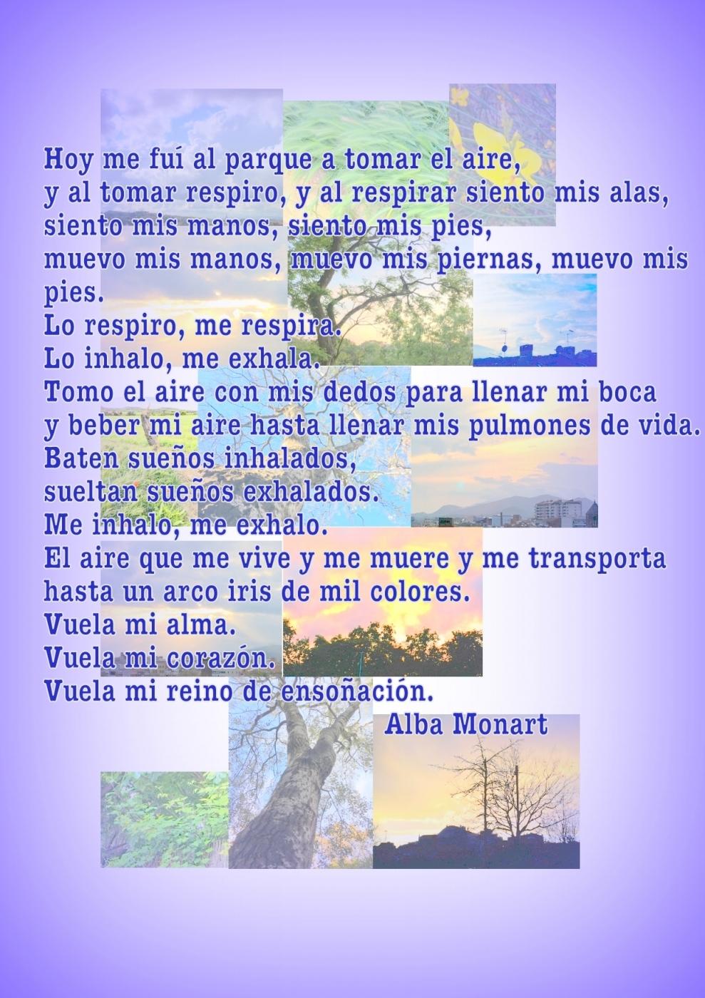 Poema Aire