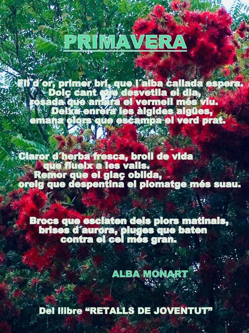 Primavera poesia Retalls de Joventut