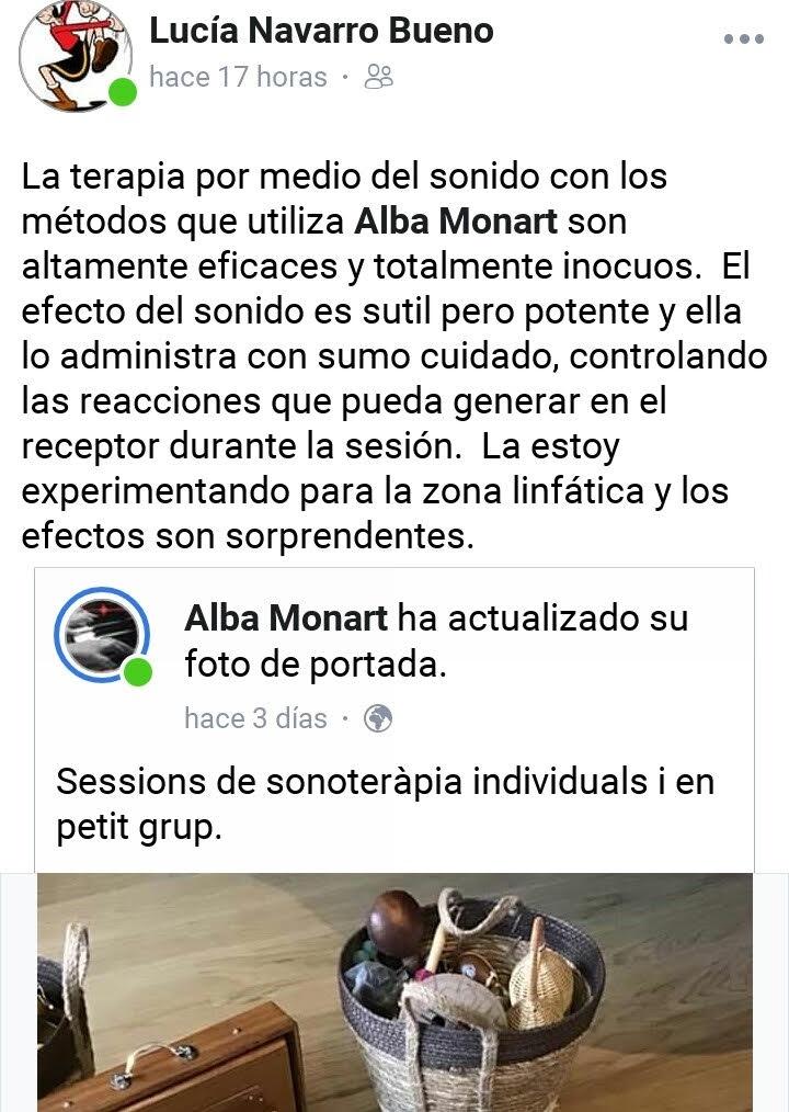 Comentari sessió de Sonoteràpia individual