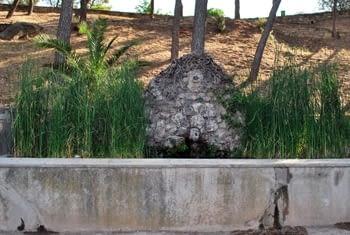 Font de la Granota