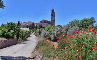 Vista amb què acabavem la visita anterior, el poble des del seu terme. En aquest cas, amb la florida de primavera.