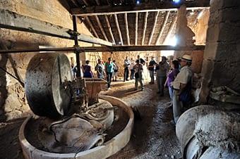 Molí de l'Ignasi del Bep de Canut. Un antic molí d'oli on es conserva una de les premses i les moles de pedra que funcionaven amb tracció animal.