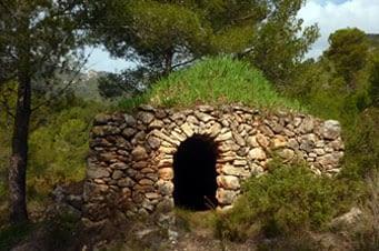 Un exemplar de barraca típica, amb el sostre cobert de lliris, solució molt comú, vista inclús en algun marge. Ha quedat envoltada pel bosc.