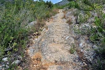 Un camí de carro amb un solc ben marcat fet a la pedra. Es veu en diversos indrets en aquesta zona abandonada.