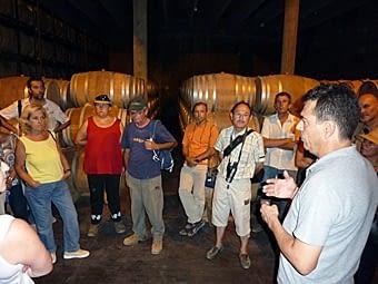 Visita a les bodegues Cusiné. El seu propietari ens explica tot el procés que va des de la vinya fins a la copa.