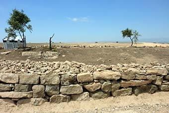 Aquí un oasi de pedra seca. Si no acaba desapareixent, s'hi podria fer excursions per saber el que val una ombra, i com pot ser, d'estètica, la pedra.