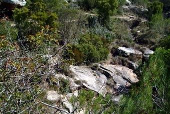 Sota el camí, la llera del riu. Ni rastre d'aigua. Pedra seca, ben seca. La primera que ens fa reflexionar de manera diferent a l'objectiu d'aquesta visita.