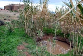 Al costat d'una cabana important, o d'una masia, s'hi sol trobar la bassa.  Això ens indica que s'hi feia vida a l'estiu a l'hora de segar i batre.  La terra argilosa fa que aquestes basses retinguin l'aigua  de  pluja sense problemes.