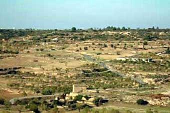 Vista general del camp des del turó de les sitges.