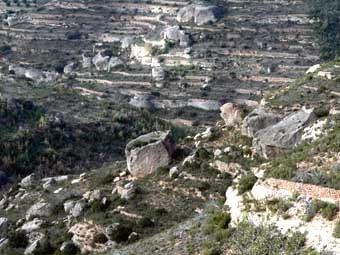 L'orografia del terreny, ple de roques voluminoses, ha   facilitat la formació i aprofitament de les balmes.