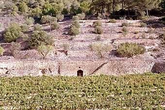 La mateixa cabana vista dins del conjunt de marges.
