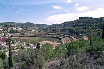 La vall de Vallbona està organitzada en bancals, o feixes allargades en forma d'un gran circ, on la pedra ressalta.