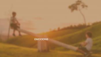 Càpsula d'emocions