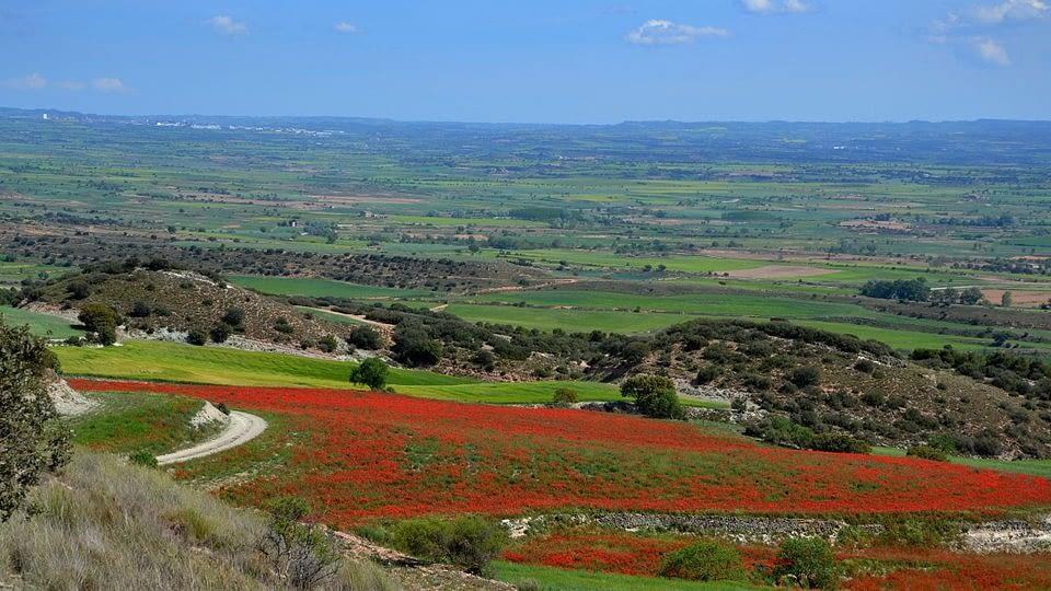 A Bellmunt d'Urgell pels corriols i els secans de les planes  (10 Km)