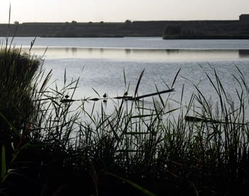estany_ivars