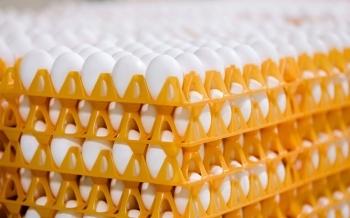 Precio de mercado de los huevos para consumo 2012