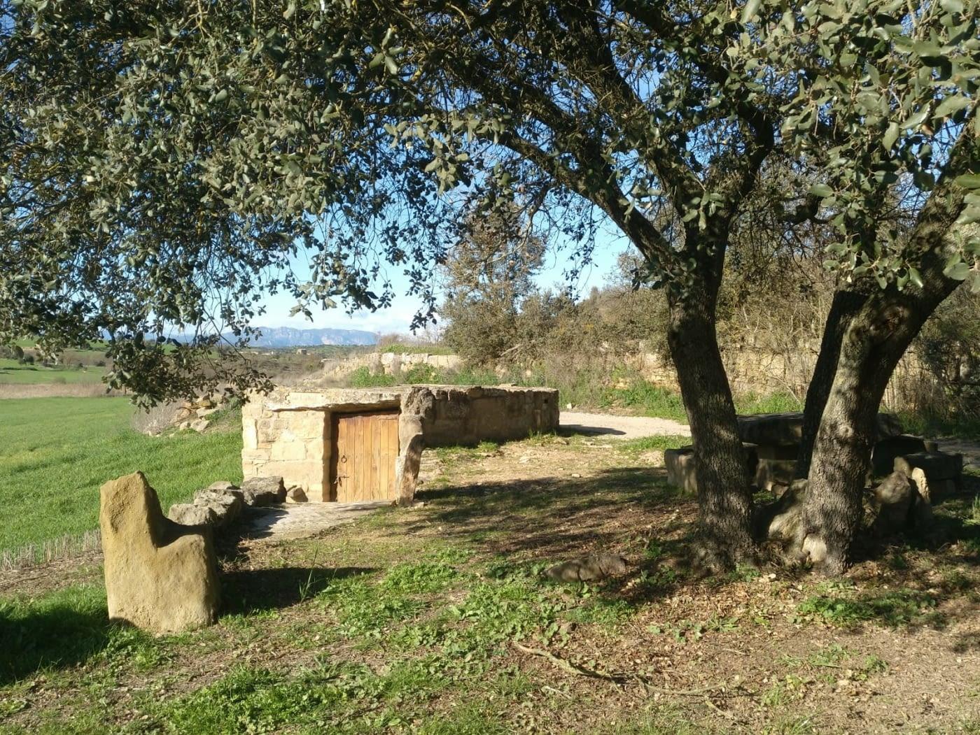 AJORNADA-Sortida pels PATAMOLLS DE GRANOLLERS DE SEGARRA ( Vall del Llobregós ), 15/03/20