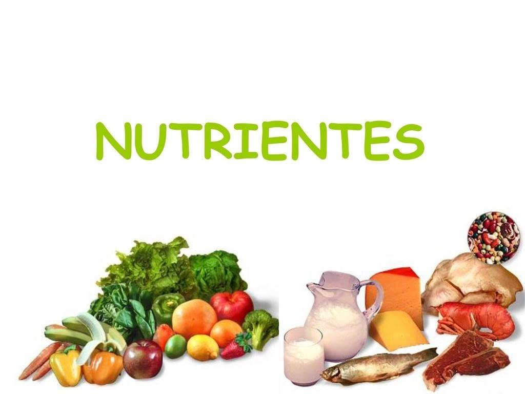 Bebidas y Alimentos que favorecen nuestro cuidado dental.