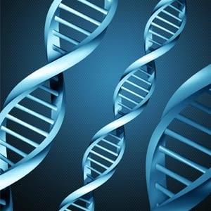 Tests genètics OBESGEN CARIOGEN NUTRIGEN SPORTGEN OSTEOGEN