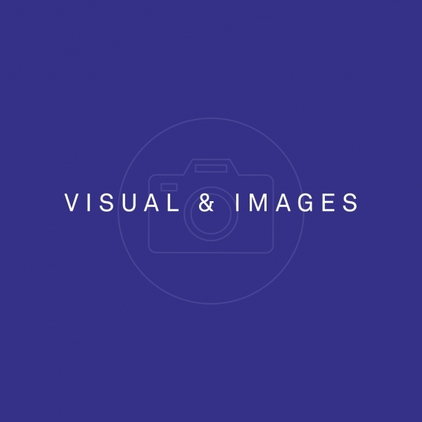 VISUAL & IMAGES