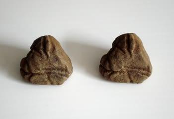Rèplica d'una pedra