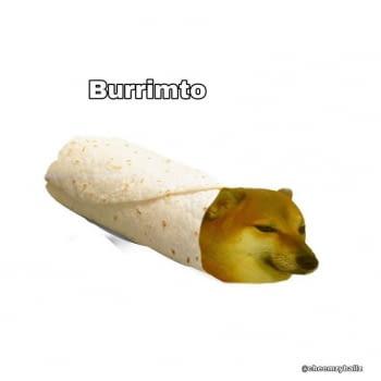 Primera Fira del Burrito i el Nacho + Tast Gastronòmic