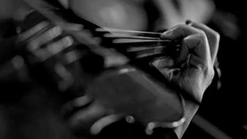 VILA CLOSA: Concerts de corda i vent