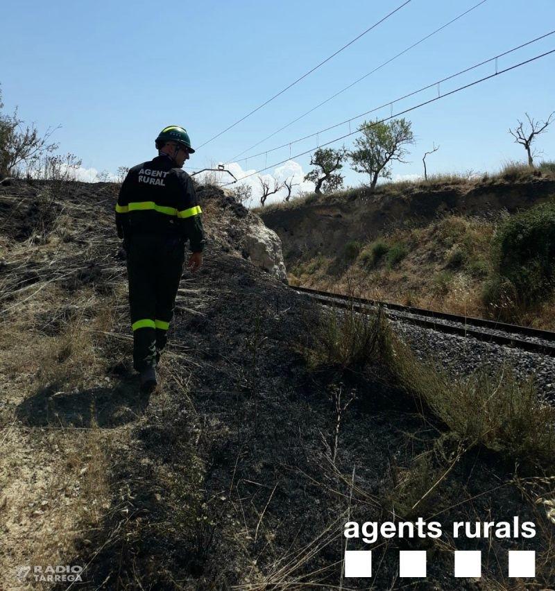 Un incendi crema 1,4 Ha de terreny erm a Anglesola