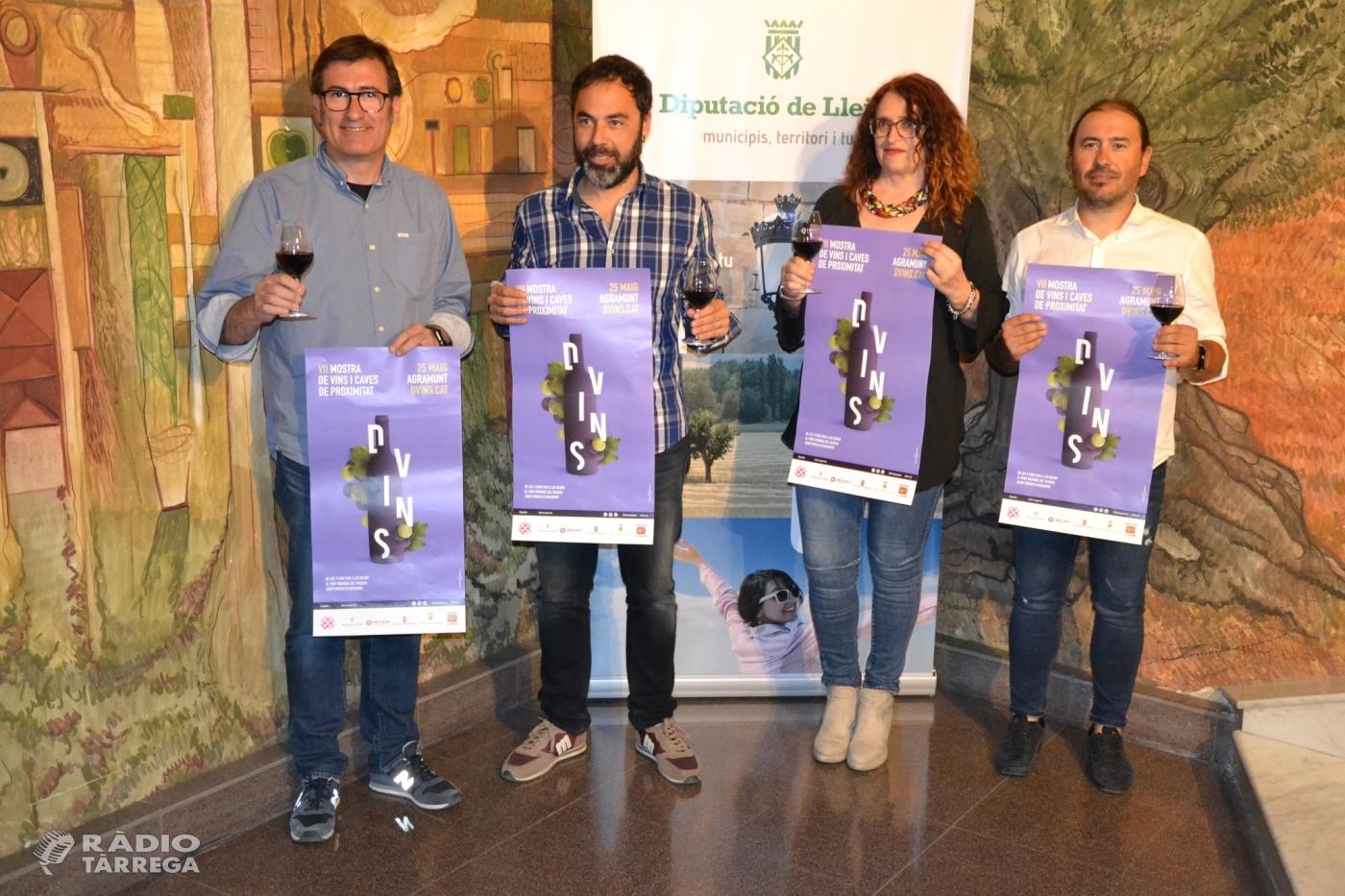Vint-i-quatre expositors de bodegues, cellers i elaboradors de vi a la 7a Mostra de Vins i Caves de proximitat-D Vins'19 d'Agramunt