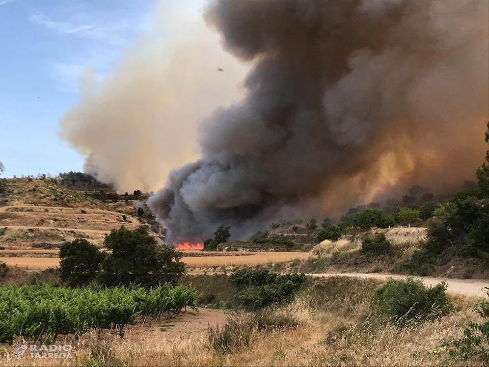 L'incendi que crema 30 hectàrees de vegetació forestal i agrícola entre Nalec i Rocafort evoluciona favorablement