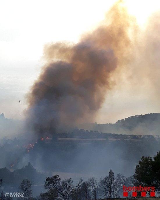 Estabilitzat l'incendi que cremava 30 hectàrees de vegetació forestal i agrícola entre Nalec i Rocafort