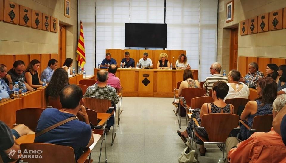 El Ple del Consell Comarcal de l'Urgell aprova el seu model d'organització pel nou mandat