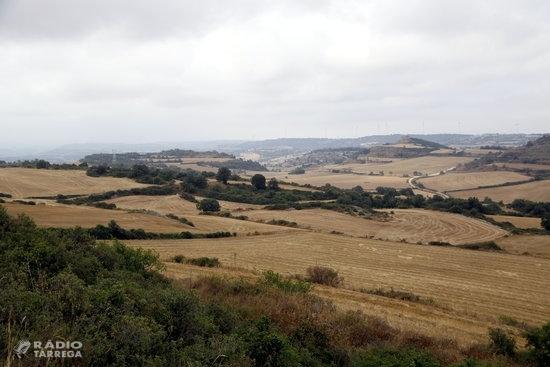 Els incendis durant la campanya de la sega del cereal es redueixen un 80% a Catalunya des del 2012