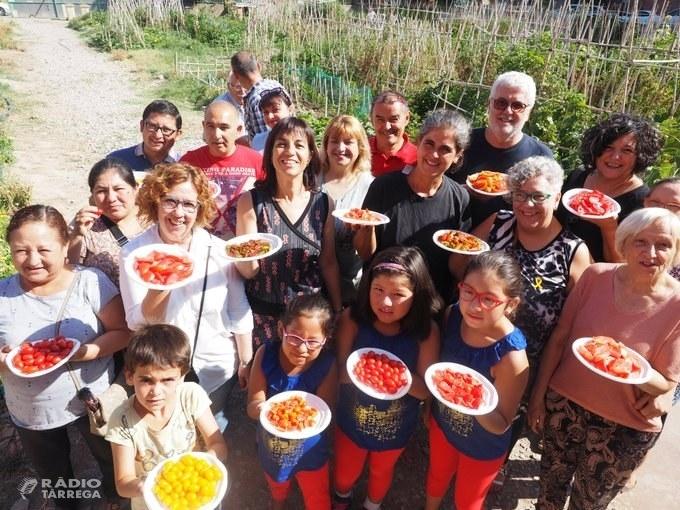 Horticultura ecològica a Tàrrega per a fomentar l'alimentació saludable i la cohesió social