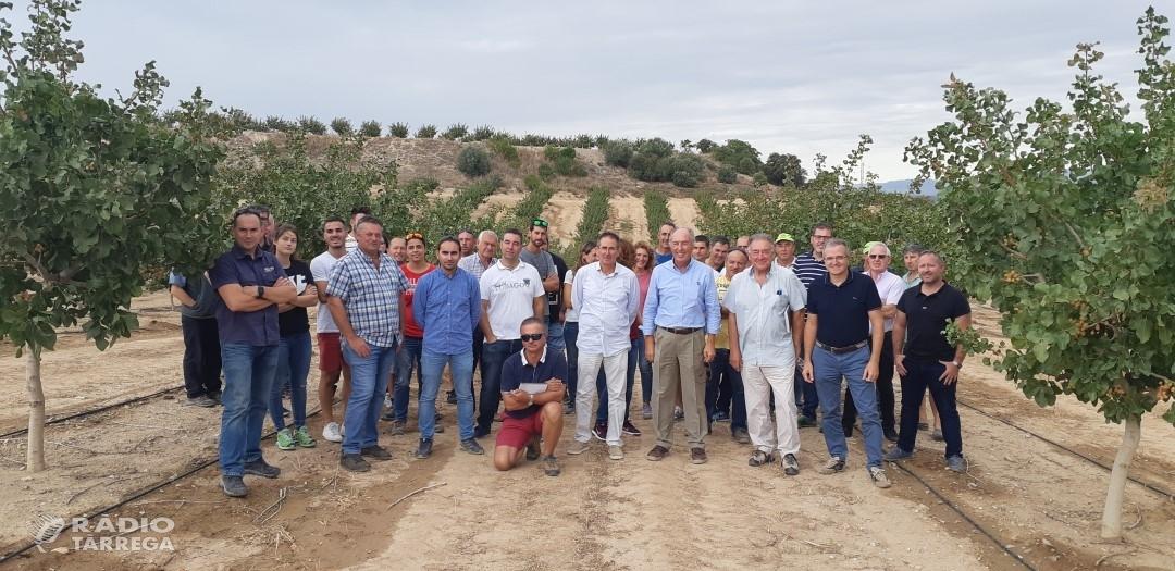 Borges Agricultural & Industrial Nuts i la Cooperativa d'Ivars visiten les finques pilot del projecte Pistatxo amb 45 pagesos