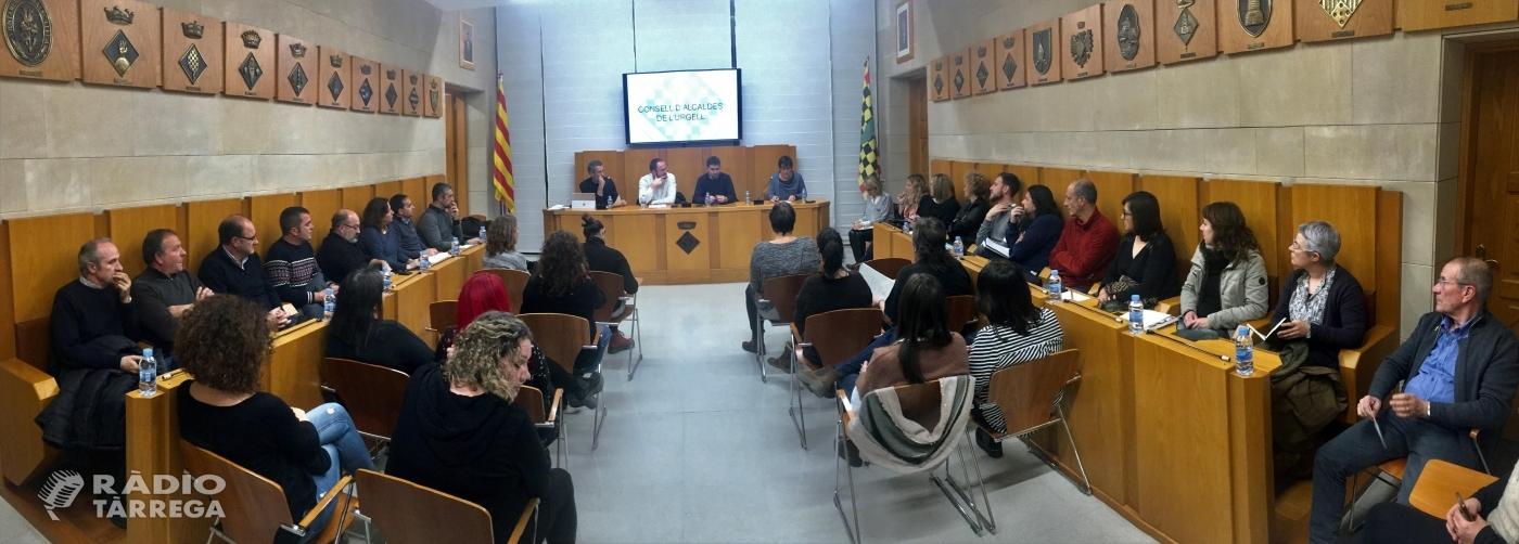 Primera sessió ordinària del Consell d'Alcaldes de l'Urgell