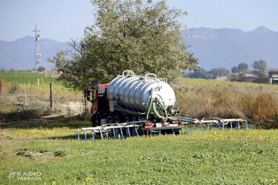 Moncloa aclareix que la producció agrícola, ramadera i pesquera es manté tot i l'estat d'alarma