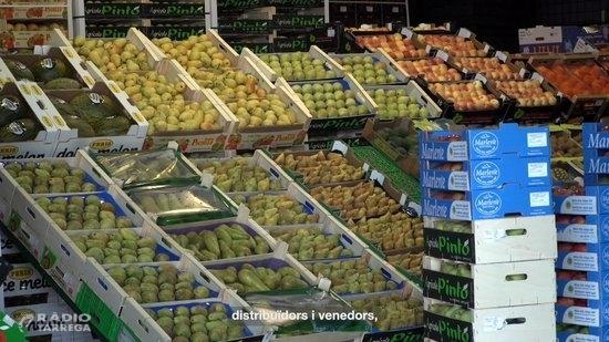 Agricultura engega una campanya per agrair la feina del sector agroalimentari per proveir aliments durant el confinament