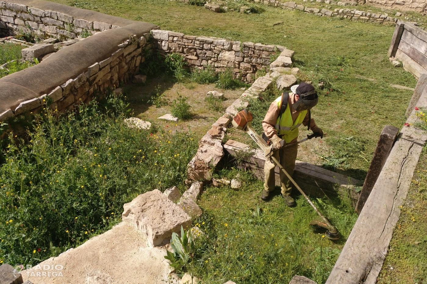 L'Ajuntament de Tàrrega promou la gestió ecològica dels espais urbans sense l'ús de glifosat