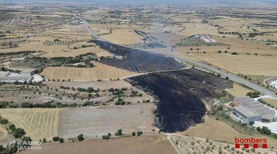 Cremen 8,4 hectàrees agrícoles en un incendi a Cervera