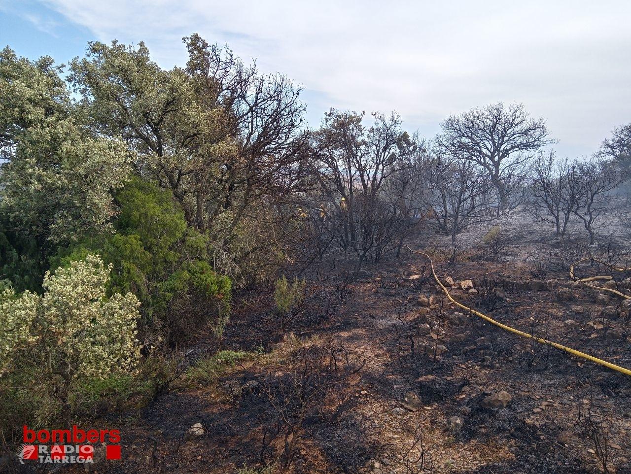 Un incendi crema poc més de 5 Ha de terreny agrícola i forestal a Agramunt