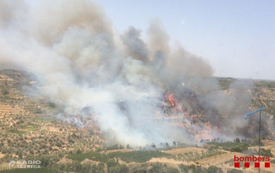 El risc d'incendi a Lleida se situa en el nivell més baix de les últimes dues dècades en l'inici de la campanya forestal