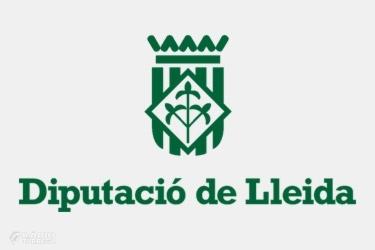 La Diputació elabora una enquesta per conèixer l'estat de situació tecnològica dels ajuntaments i les comarques de Lleida