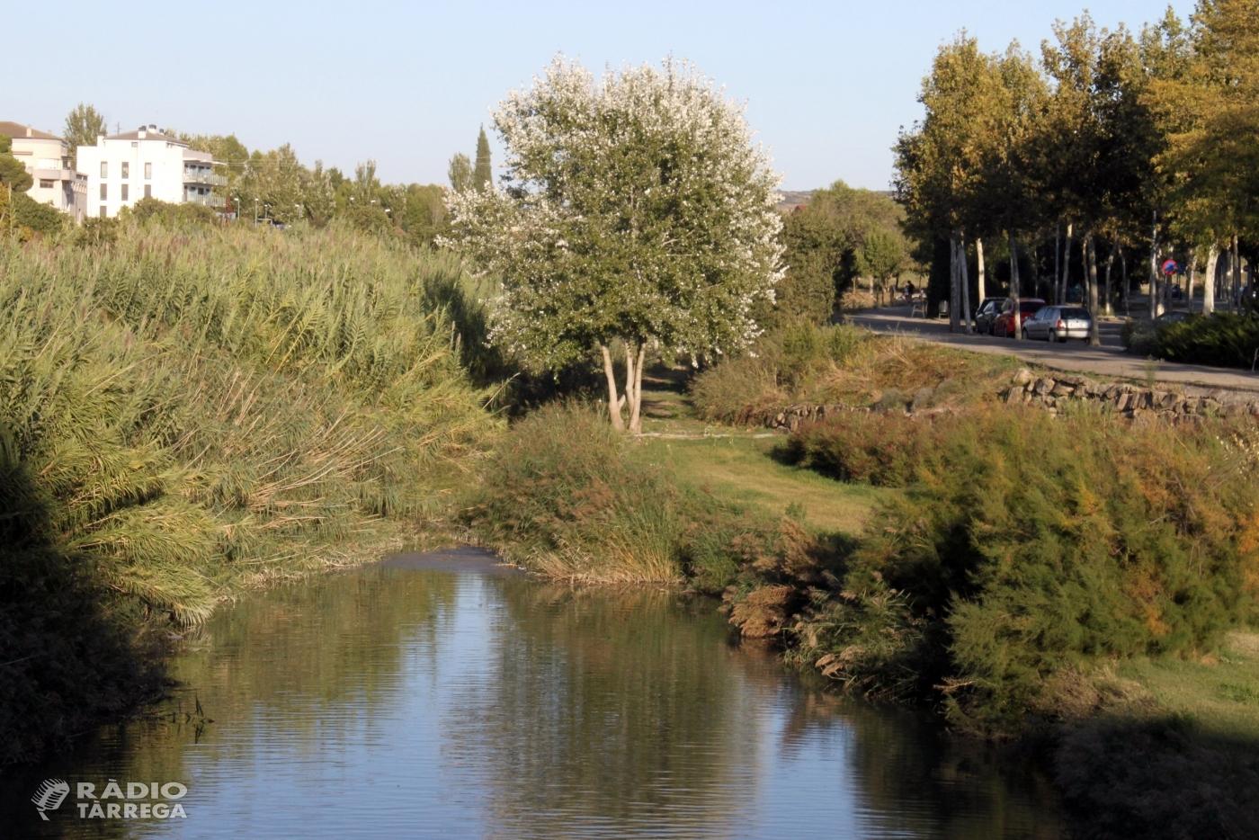 L'Ajuntament de Tàrrega aprova un nou projecte de recuperació dels espais verds situats a la llera del riu Ondara