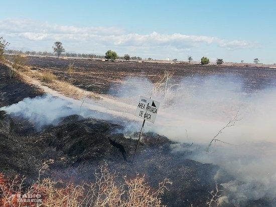 Els Bombers extingeixen un incendi agrícola entre Belianes i Vilanova de Bellpuig que ha cremat 12,9 hectàrees