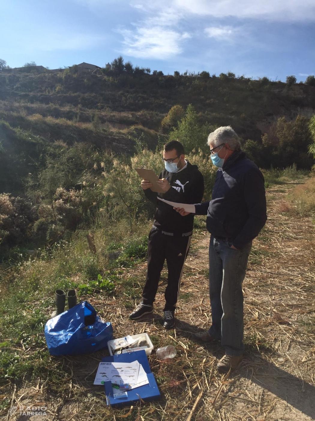 El Grup d'Ecologia i Medi Ambient GEMA de Tàrrega analitza l'estat en què es troba el diu Ondara