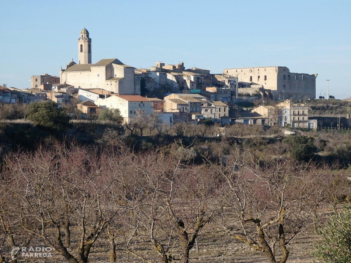 6 pobles de l'Urgell sense telèfon ni internet per un nou robatori de cable