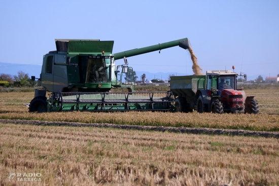 Agricultura abona el 70% dels imports dels ajuts directes de la PAC 2020 que ascendeixen a 160 MEUR