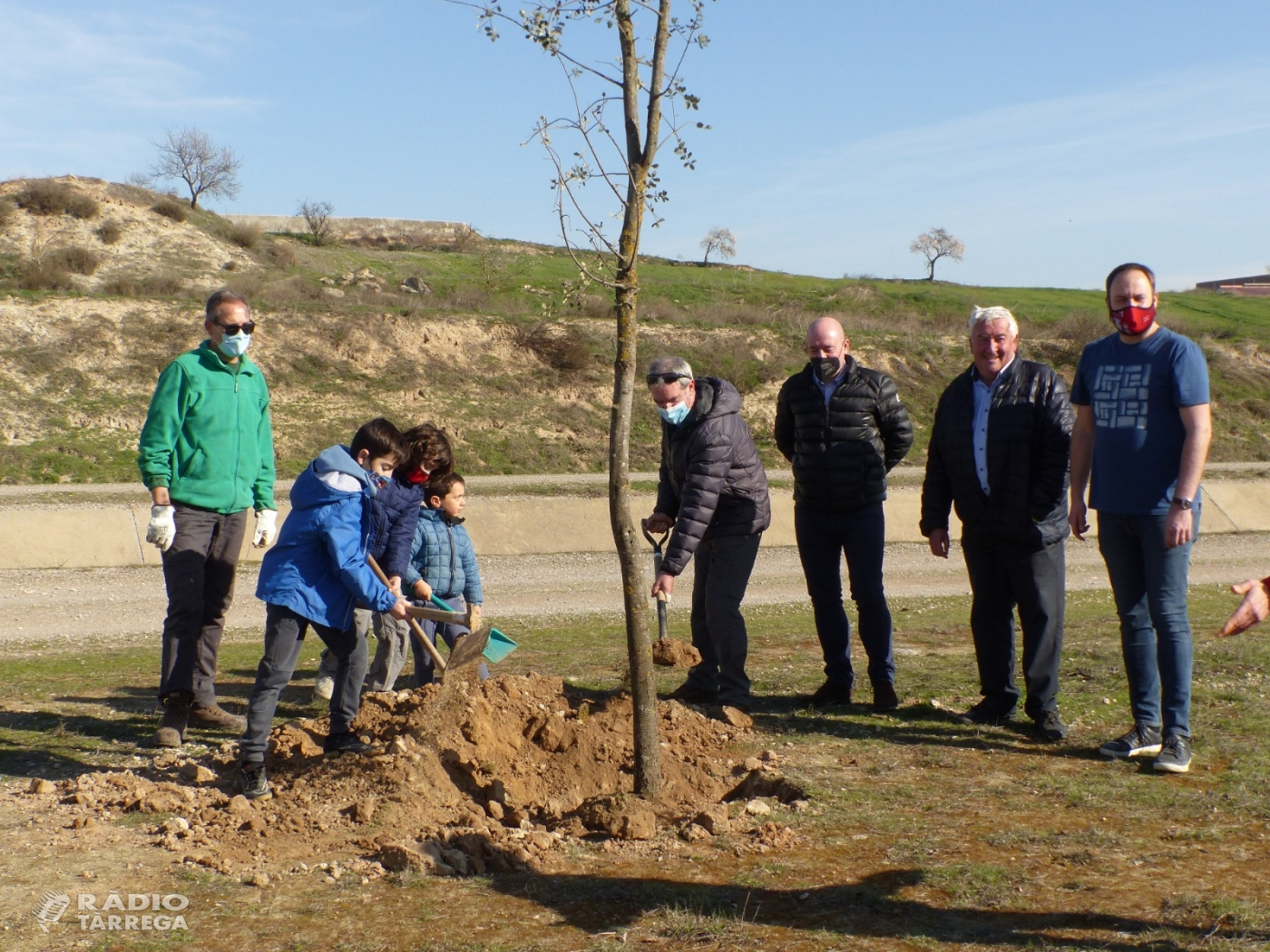 Canal Viu celebra els seus cinc anys de vida amb una plantada d'alzines a Castellserà